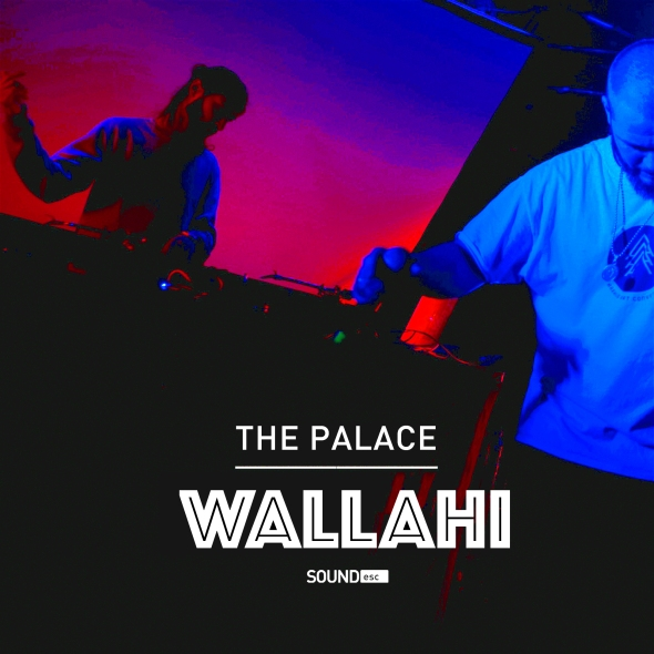thepalcewalahi1
